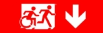 Egress Group Running Man Wheelchair Wheelie Man Symbol Accessible Means of Egress Icon Exit Sign 102