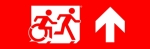 Egress Group Running Man Wheelchair Wheelie Man Symbol Accessible Means of Egress Icon Exit Sign 114