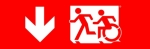 Egress Group Running Man Wheelchair Wheelie Man Symbol Accessible Means of Egress Icon Exit Sign 66