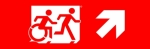 Egress Group Running Man Wheelchair Wheelie Man Symbol Accessible Means of Egress Icon Exit Sign 96