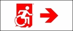 Egress Group Wheelchair Wheelie Man Symbol Accessible Means of Egress Icon Exit Sign 106