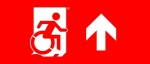 Egress Group Wheelchair Wheelie Man Symbol Accessible Means of Egress Icon Exit Sign 114