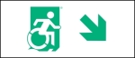 Egress Group Wheelchair Wheelie Man Symbol Accessible Means of Egress Icon Exit Sign 33