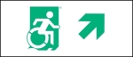 Egress Group Wheelchair Wheelie Man Symbol Accessible Means of Egress Icon Exit Sign 36