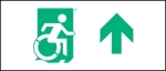 Egress Group Wheelchair Wheelie Man Symbol Accessible Means of Egress Icon Exit Sign 45