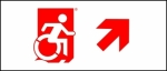 Egress Group Wheelchair Wheelie Man Symbol Accessible Means of Egress Icon Exit Sign 94