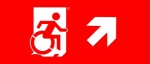 Egress Group Wheelchair Wheelie Man Symbol Accessible Means of Egress Icon Exit Sign 96